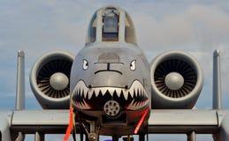 A-10 colpo di fulmine II/Warthog Immagini Stock Libere da Diritti