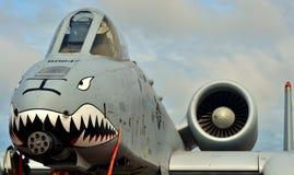 A-10 colpo di fulmine II/Warthog Fotografia Stock