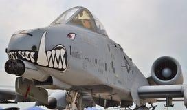 A-10 colpo di fulmine II/Warthog Fotografia Stock Libera da Diritti