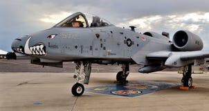 A-10 colpo di fulmine II/Warthog Fotografie Stock Libere da Diritti