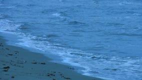 Colpo di Loopable delle onde che lavano spiaggia sabbiosa Superficie increspata dell'acqua Ritenere solo archivi video