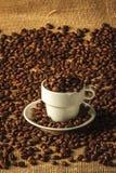 Colpo di umore dei chicchi di caffè arrostiti Immagini Stock Libere da Diritti