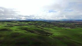 Colpo epico di bei campi e colline verdi video d archivio