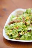 Colpo esterno di insalata di verdure Fotografia Stock Libera da Diritti