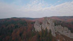 Colpo impressionante del fuco delle colline della montagna in autunno della foresta Siluetta dell'uomo Cowering di affari archivi video