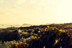 Colpo inter-elaborato stordimento del ` s del Sudafrica, di Cape Agulhas e quindi punto più a sud del ` s dell'Africa Immagini Stock Libere da Diritti