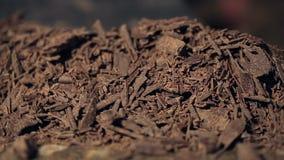 Colpo macro di rifocalizzazione sul mucchio di di pepita di cioccolato stock footage