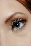 Colpo a macroistruzione dell'occhio con trucco marrone Fotografia Stock Libera da Diritti