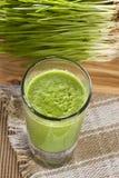 Colpo organico verde dell'erba del grano Immagini Stock Libere da Diritti