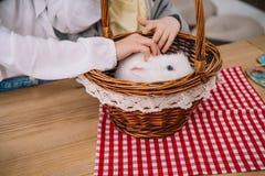 colpo potato dei bambini che giocano con il coniglio immagini stock libere da diritti