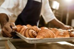 colpo potato del vassoio della tenuta del panettiere con i croissant fotografie stock