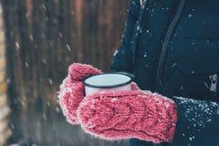 colpo potato della donna che tiene tazza di tè in mani il giorno di inverno Immagini Stock Libere da Diritti