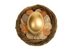 Colpo sopraelevato dell'uovo dorato in nido Immagine Stock Libera da Diritti