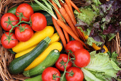 Colpo sopraelevato delle verdure sane fresche Fotografia Stock Libera da Diritti
