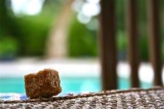 Colpo stretto dello zucchero di Brown Fotografia Stock Libera da Diritti