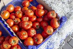 Colpo superiore di molti pomodori sulla scatola di plastica Fotografie Stock