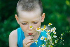 Colpo in testa del ragazzo sveglio che mangia il fiore della camomilla isolato sul bl verde Immagine Stock