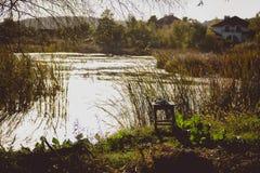 Colpo tonificato del lago con la coltura dell'erba alta sulla riva Fotografia Stock