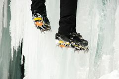 Colpo vicino dei piedi del ` una s dello scalatore su ghiaccio Immagine Stock Libera da Diritti