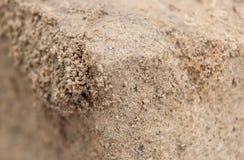 Colpo vicino della sabbia imballata fotografia stock libera da diritti