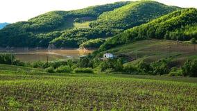 colpo vicino di una valle fertile idilliaca affascinante Fotografie Stock