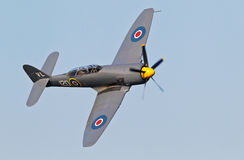 Colporteur Sea Fury Image stock