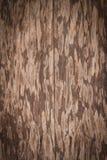 Colse omhoog van oude houten deur Stock Fotografie