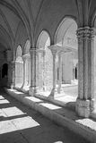 Colster σε Arles Στοκ φωτογραφία με δικαίωμα ελεύθερης χρήσης