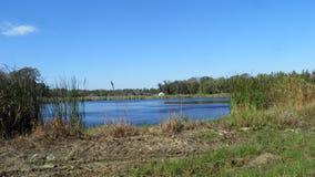 Colt creek state park lake. Lakeland Florida park royalty free stock photos