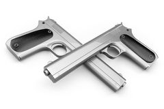 Colt pair Royalty Free Stock Photography