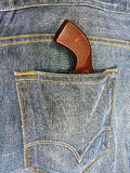 Colt in the pocket Stock Photo