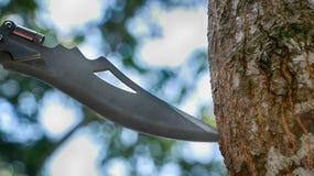 Coltello attaccato sull'albero immagine stock