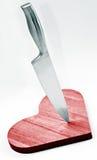 Coltello d'acciaio Immagini Stock