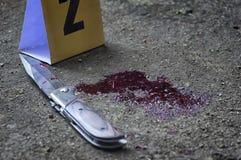 Coltello sanguinoso ed indicatori criminali su terra, prova dell'omicidio C Immagine Stock Libera da Diritti