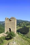 Coltesti fortress Royalty Free Stock Photo