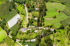 Coltivando all'elevata altitudine nelle Ande Fotografia Stock