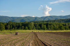 Coltivando con il trattore e l'aratro nel campo con la montagna Papuk in Th Immagine Stock Libera da Diritti