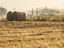 Coltivando i rotoli della balla di fieno del raccolto nelle prime ore del mattino Fotografie Stock Libere da Diritti