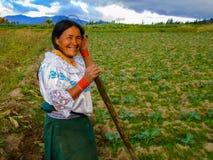 Coltivando in Otavalo, l'Ecuador Fotografie Stock