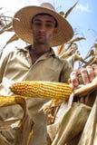 Coltivatore Fotografie Stock Libere da Diritti