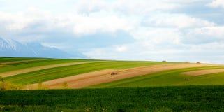Coltivatore che ara il campo Coltivazione del trattore nel campo Montagna della neve nel fondo Fotografie Stock Libere da Diritti