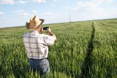 Coltivatore che si leva in piedi in un campo di frumento Fotografia Stock