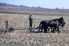 Coltivatore dei Amish Fotografia Stock Libera da Diritti