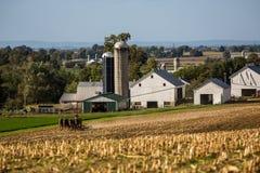 Coltivatore dei Amish Immagine Stock Libera da Diritti