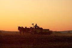 Coltivatore dei Amish al tramonto Fotografia Stock Libera da Diritti
