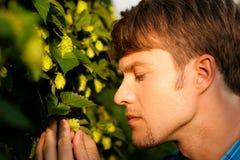 Coltivatore del luppolo che controlla il suo raccolto Immagine Stock Libera da Diritti