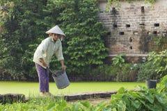 Coltivatore del Vietnam Immagine Stock Libera da Diritti