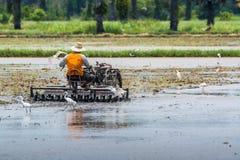 Coltivatore tailandese Fotografia Stock