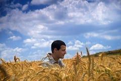 Coltivatore in un campo di frumento immagini stock libere da diritti