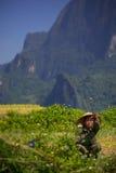 Coltivatore vietnamita Immagine Stock Libera da Diritti